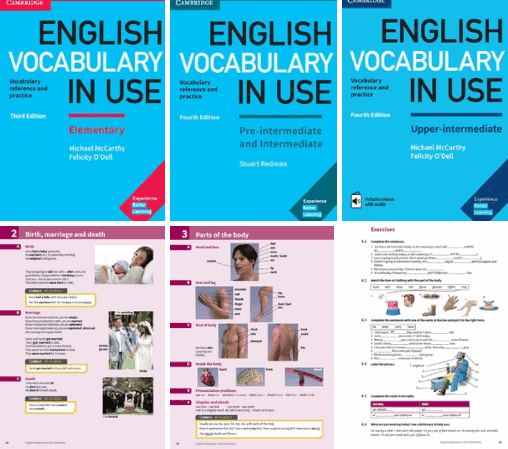 English Vocabulary In Use Ebook