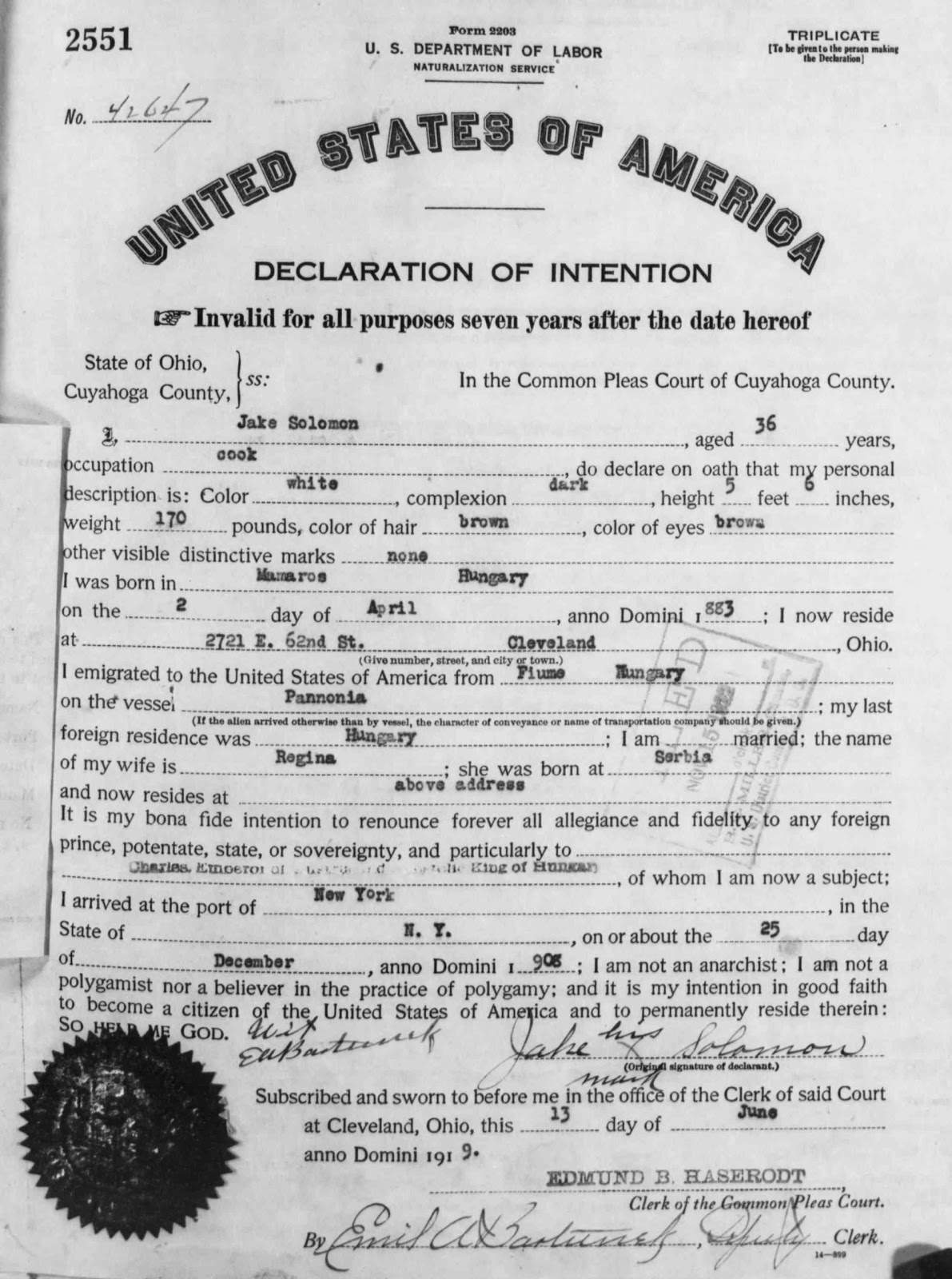 A jewish genealogy journey 2012 when jake solomon filed his declaration of intention on june 13 1919 he was 36 years old and working as a cook he reports that he is of dark complexion aiddatafo Images