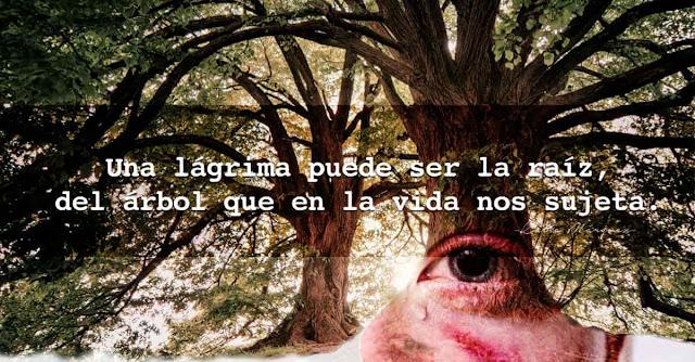 Una lágrima puede ser la raíz,delárbol que en la vida nos sujeta