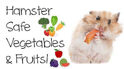 Syrian hamster vegetables