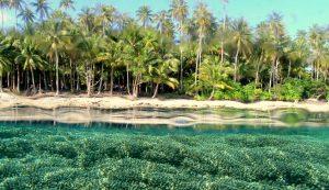 Wisata Pulau Biak Papua, Miliki Keindahan Alam yang Tiada Duanya, Panorama Keindahannya Menyihir Mata