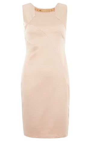 http://euro.dorothyperkins.com/en/dpeu/product/sale-2654443/view-all-sale-742255/dresses-742278/blush-embellished-pencil-dress-4366815?bi=1&ps=200