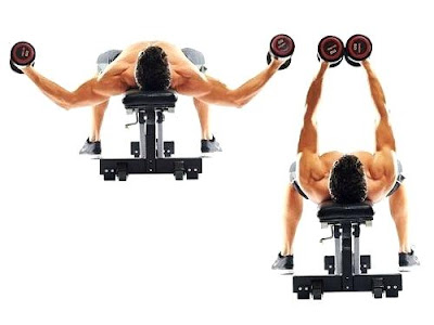 Flat Dumbbell Fly