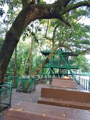 gardu pandang forest walk hutan kota baksil