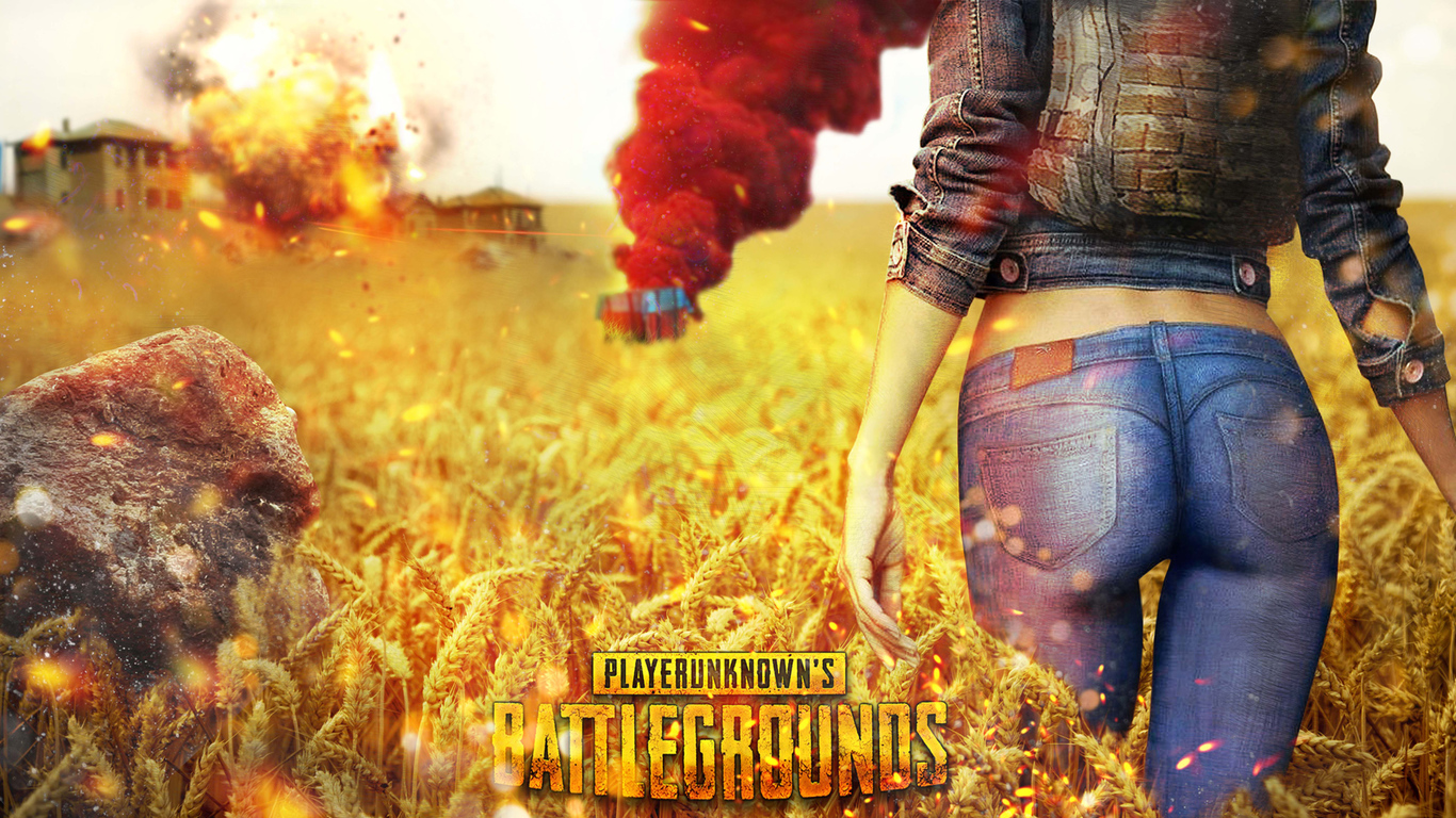 56 Pubg Stock Wallpapers