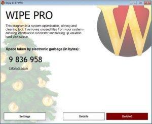 Wipe Pro 17.22 Multilingual Full Version