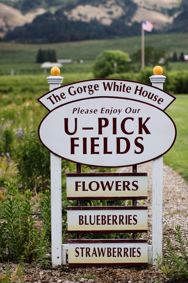 The Gorge White House - U-Pick Fields on the Fruit Loop