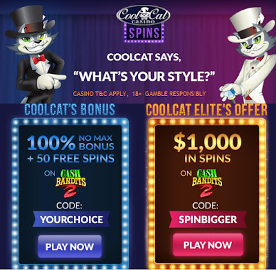 Choose your bonus: 100% Match and 50 Free Spins worth 4125 or 40 Free Spins worth $1,000 | Cool Cat Casino