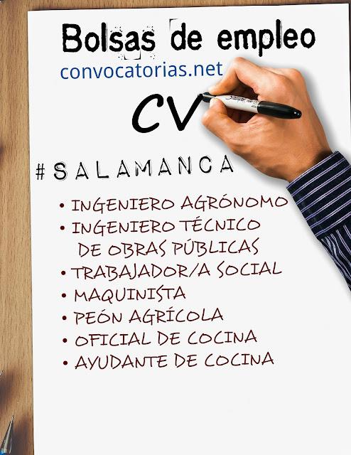 Convocatoria de bolsas de empleo en la diputación de Salamanca en noviembre de 2017