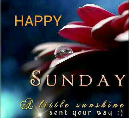 50 Good Morning Sunday Images For Whatsapp Sunday Morning Wishes