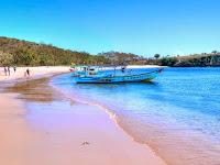 Indahnya Pantai Pink di Lombok yang Menarik untuk Dikunjungi