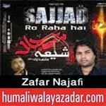 http://audionohay.blogspot.com/2014/10/zafar-najafi-nohay-2015.html