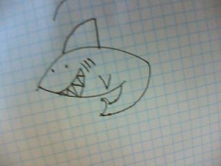 apprendre-a-dessiner-un-requin-7 Comment dessiner un requin