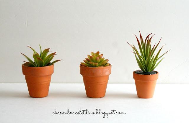 Succulent clay pot