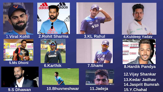 ICC World Cup 2019 India Team Player
