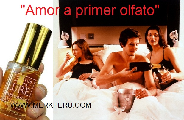 Perfumes para atraer sexualmente hombre