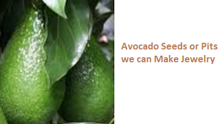 Avocado Seeds or Pits we can Make Jewelry