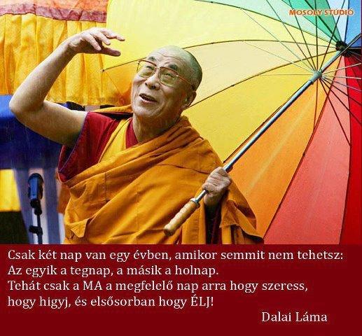 dalai láma idézetek a szerelemről Egy csepp a tengerből: Dalai Láma: