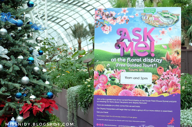 free guide tour at flower dome garden by the bay