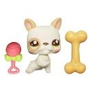 Littlest Pet Shop Baby Pets Bulldog (#2554) Pet