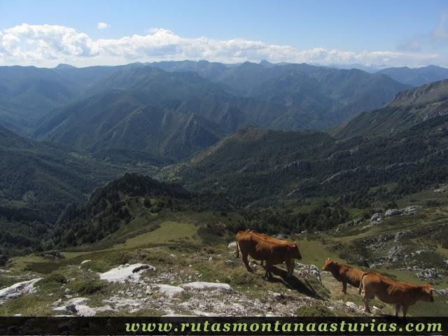 Ruta circular Taranes Tiatordos: Subiendo la ladera del Tiatordos