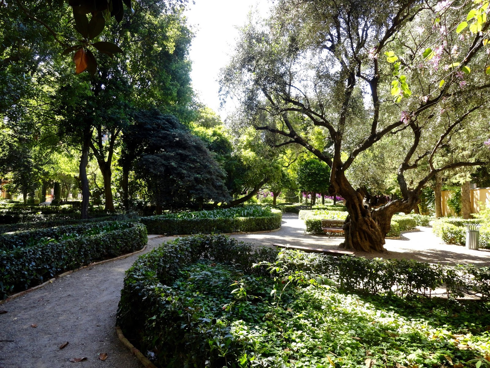 monforte garden valencia spain trees green