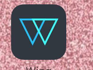 App - Winq