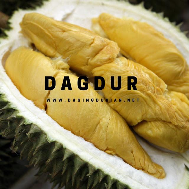 reseller-daging-durian-medan-terharum-di-banyumas