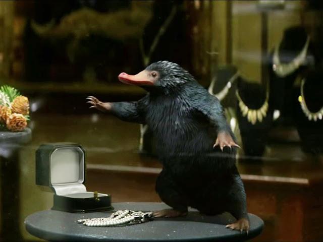 Un Niffleur du film Les Animaux Fantastiques, critique par clowy
