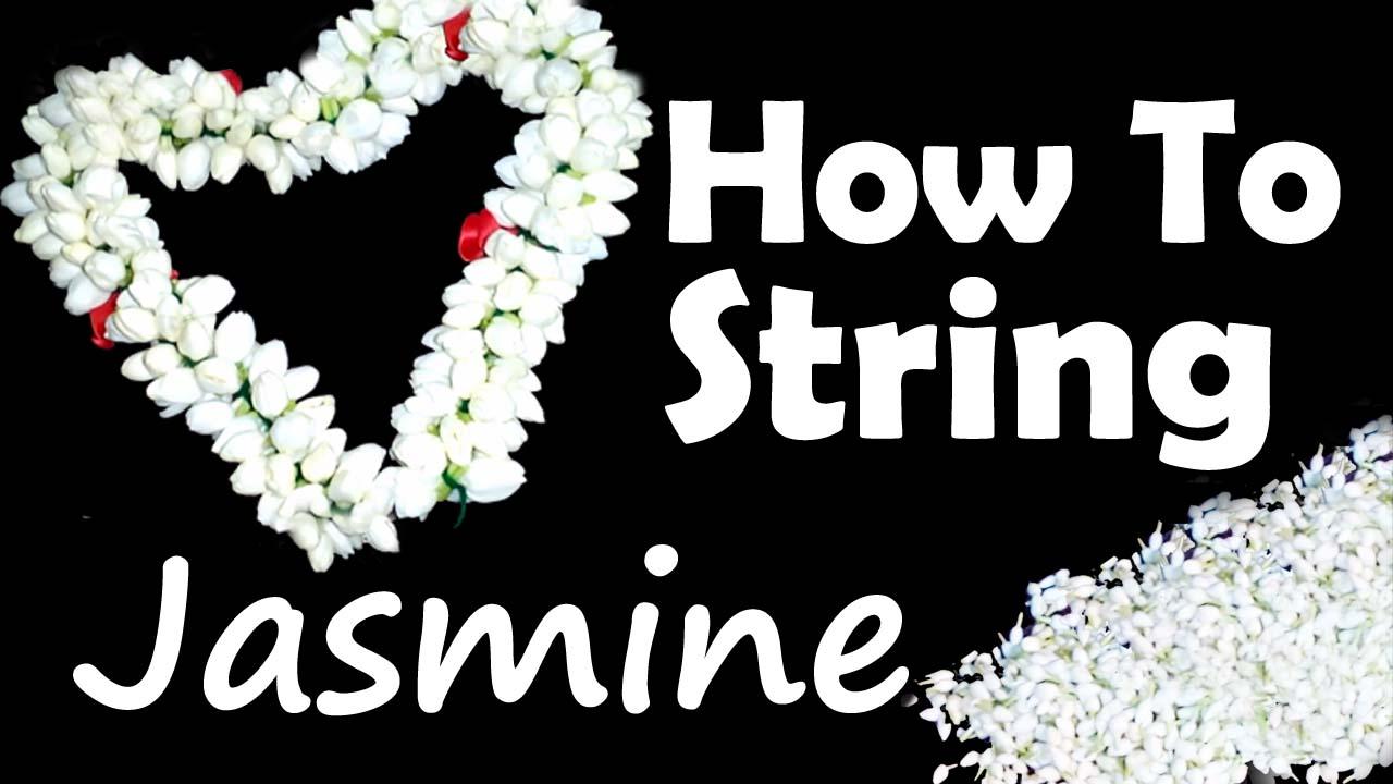 Simple Method To String Jasmine Flower Nalam Peruvom Nalam Peruvom