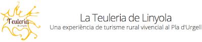 http://www.teuleriadelinyola.cat/