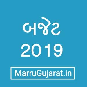 Budget 2019-20 in Gujarati pdf