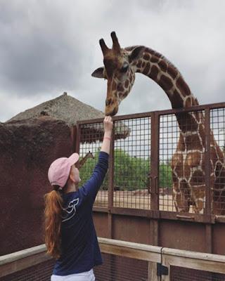 foto en zoológico con jirafa