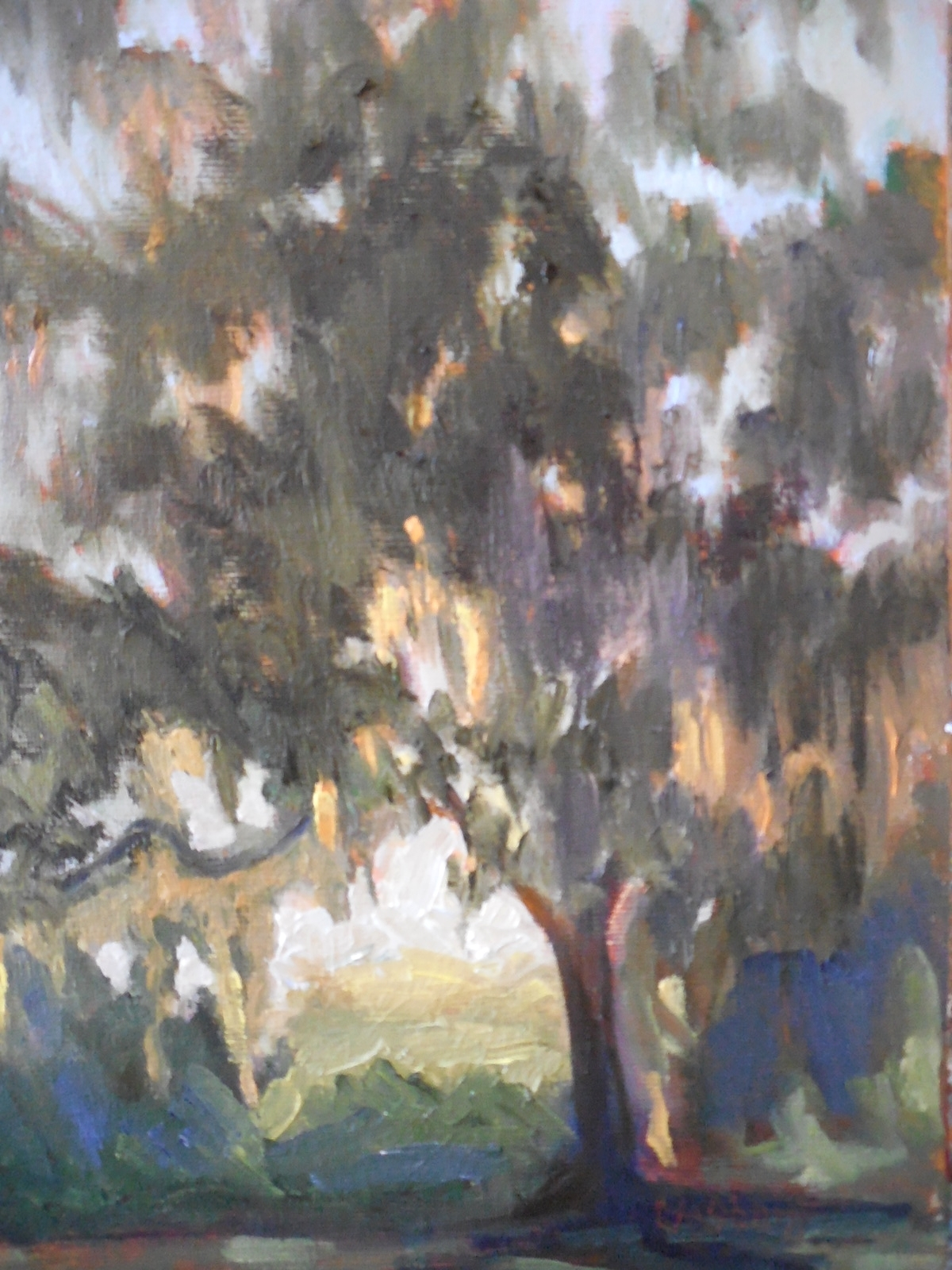 Daily Painters of Florida: Impressionist Landscape Painting