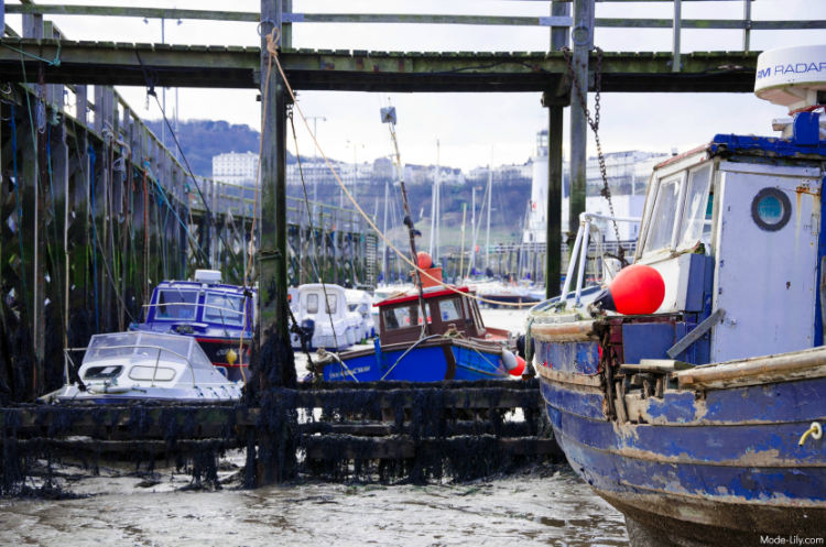 Travel Diary: Places to Visit in Scarborough - Harbor