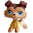 Littlest Pet Shop Portable Pets Collie (#58) Pet