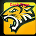 Cash Tiger