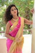 pavani new photos in saree-thumbnail-25