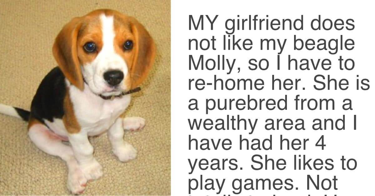 When A Woman Asked Her Boyfriend To Choose Between Her And His Dog, She Didn't Expect This Answer