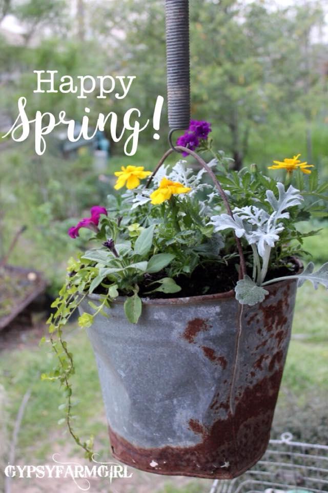 Gypsyfarmgirl happy spring video of how to plant flowers in rusty bottomless bucket flower planter mightylinksfo