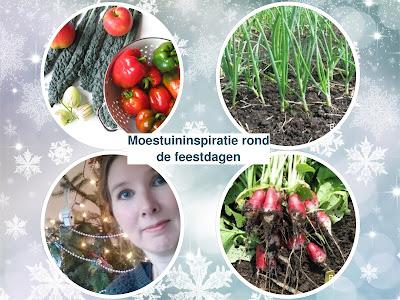 https://bijlon.blogspot.nl/2017/12/de-moestuin-gaat-in-winterslaap.html