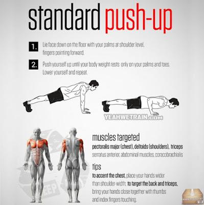 kesan push up