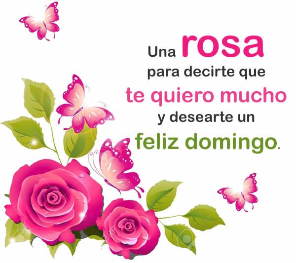Frases De Feliz Domingo Para Compartir En Facebook Imagenes