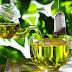 الشاي الأخضر قاتل للسرطان؟