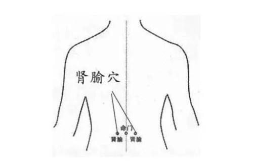 晚上總起夜,多半是腎虧虛了?身體自帶4大穴,養腎護腎,固本(腰膝酸軟)