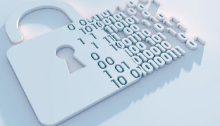 Salvare password