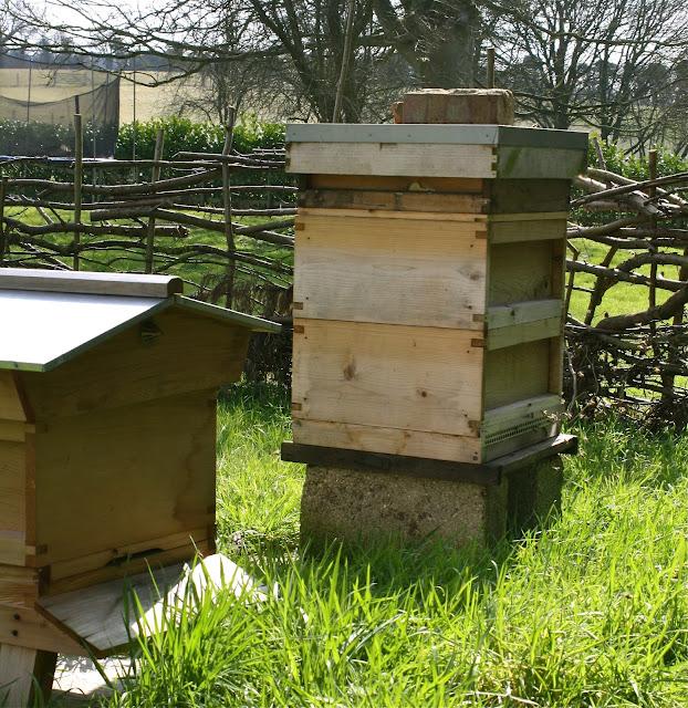 hives in spring