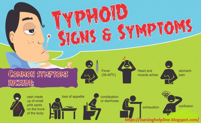 Sign and symptoms of typhoid fever