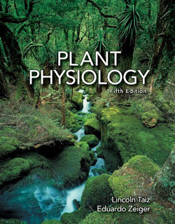 Plant physiology taiz and zeiger 3rd edition