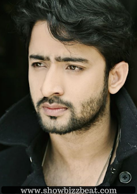 Shaheer Sheik Biopedia, Age, Height, Weight, Education, Career, Salary, Girlfriends | Showbizbeat